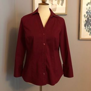 Ann Taylor Fitted Button Down Shirt